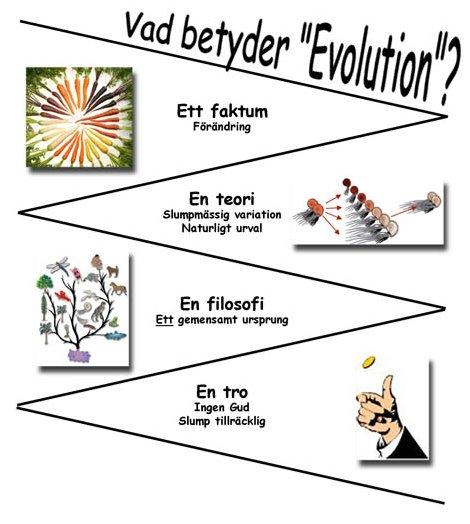 Vad Betyder Evolution